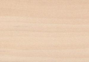 dřevo masiv lípa